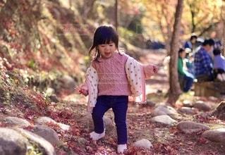 紅葉狩りを楽しんでいる女の子の写真・画像素材[2554934]