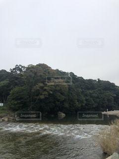 大きな木と川の写真・画像素材[2722775]