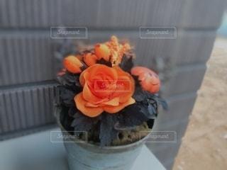 かぼちゃの飾りの写真・画像素材[2755147]