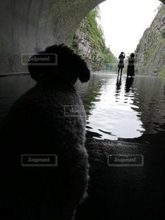清津峡の写真・画像素材[2518139]