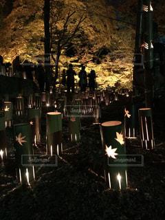 夜にライトアップされた街の写真・画像素材[2539516]