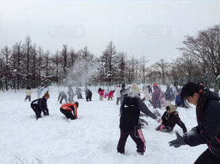 冬,雪景色,子どもたち