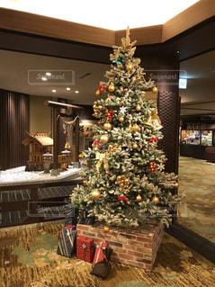 クリスマスが今年もやってくる〜!の写真・画像素材[2599737]