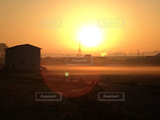 朝陽に照らされての写真・画像素材[2653492]