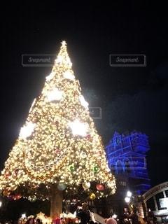 クリスマスツリーの写真・画像素材[2782915]