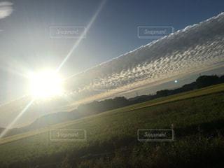 自然,空,秋,屋外,太陽,朝日,雲,田舎,光,田んぼ,景観