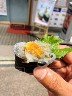 生しらすの寿司の写真・画像素材[2892404]