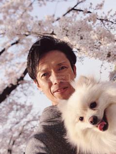 犬,花,春,自撮り,桜,動物,ポメラニアン,屋外,ピンク,満開,お花見,人,笑顔,ツーショット
