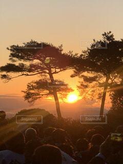 自然,風景,空,屋外,朝日,樹木,正月,お正月,日の出,新年,初日の出,神道山