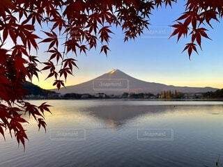 富士山と紅葉の写真・画像素材[4094104]