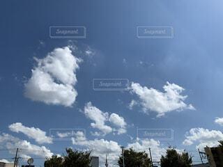 空,屋外,雲,樹木