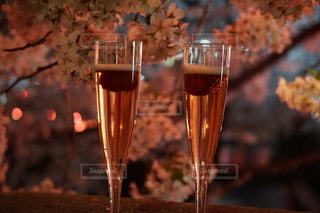 桜,夜桜,グラス,乾杯,ドリンク,中目黒桜