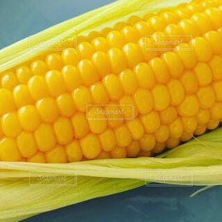 トウモロコシのクローズアップの写真・画像素材[3666222]