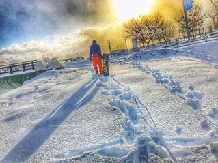 雪の中の苦労人の写真・画像素材[2535749]