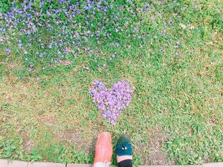 花,春,靴,仲良し,ハート,愛,台湾,デート