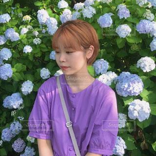 夏の紫陽花の写真・画像素材[3693445]