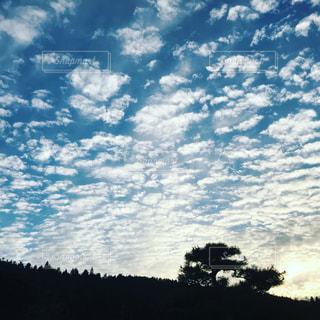 空,秋,雲,夕方