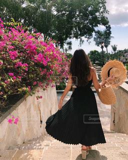 夏休みの写真・画像素材[2573792]