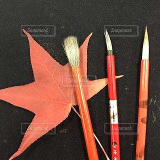 秋の色の写真・画像素材[2546334]