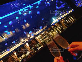 魚,水族館,ワイン,グラス,dinner,クラゲ,乾杯,バー,ドリンク,シャンパン,BAR,水槽,さかな