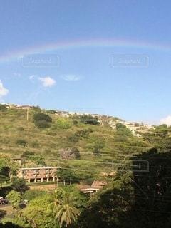 丘にかかる虹の写真・画像素材[2539802]
