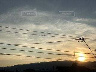 夕陽の写真・画像素材[3358025]