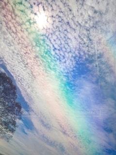 自然の写真・画像素材[2568454]