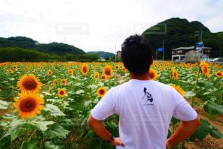 花の前に立つ男の写真・画像素材[2539004]