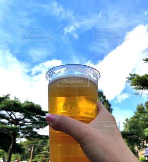 青空,楽しい,グラス,ビール,乾杯,美味しい,ドリンク,秋晴れ