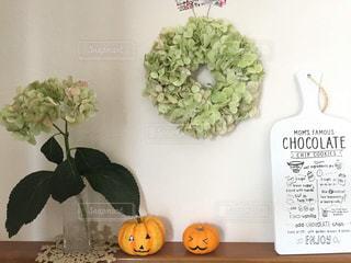 かぼちゃとあじさいの写真・画像素材[2752941]
