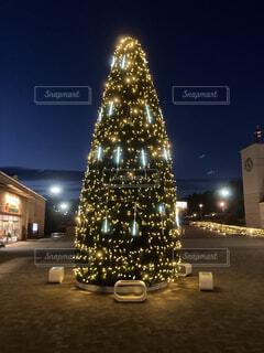 クリスマスツリーの写真・画像素材[3980429]