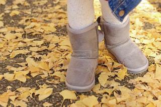 秋の写真・画像素材[2707514]