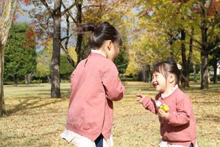 ファッション,秋,冬,紅葉,後ろ姿,子供,ピクニック,洋服,人物,イチョウ,服,コーディネート,コーデ,姉妹,娘,外遊び,衣類,長袖,お揃いコーデ