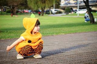 かぼちゃキッズの写真・画像素材[2756421]
