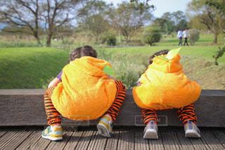 Wかぼちゃの写真・画像素材[2756423]