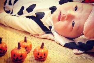かぼちゃさんと、の写真・画像素材[2757069]