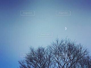 月のある風景の写真・画像素材[3716732]