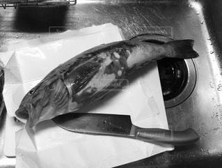 オーブンから飛び出す魚の写真・画像素材[2681779]