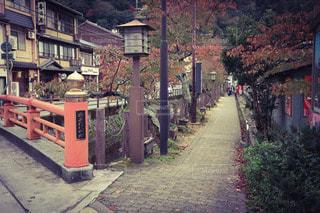 城崎温泉の街並みの写真・画像素材[2906411]
