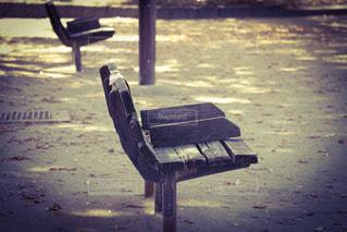 公園の木のベンチの写真・画像素材[2906416]