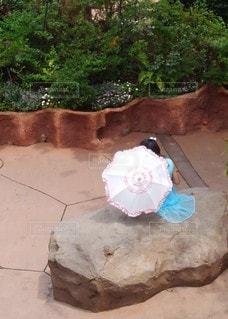 日傘のお姫様🎶の写真・画像素材[2596847]