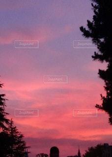 自然,風景,空,夕日,屋外,ピンク,太陽,雲,夕暮れ,光,樹木,草木