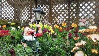 小人のいるお花畑の写真・画像素材[3072091]