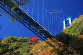 橋の上の大きな長い列車の写真・画像素材[873320]