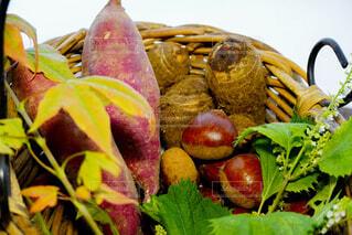 籠の中にさつま芋、里芋、栗の写真・画像素材[4835677]