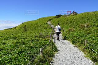 緑の中を歩く人の写真・画像素材[4932214]