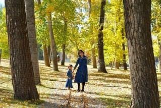 森の木の隣に立っている人の写真・画像素材[3745965]