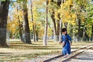 秋の散歩道の写真・画像素材[3745967]