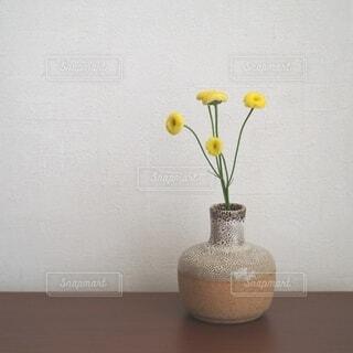 春の花の写真・画像素材[4298937]