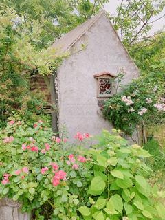 レストランの庭ですの写真・画像素材[3037171]